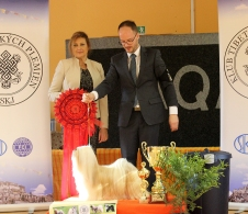 Her second BISS in 2016 under Mrs. Yana Gavrilova