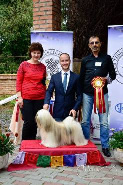 BISS at the Tibetan Breeds Club Specialty in 2014