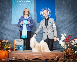 My favourite picture of her! Winning 1st AOM at the US National weekend specialty under breed specialist Mrs. Keke Kahn