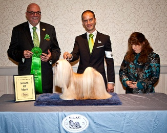 Winning AOM the same weekend at the Regional Specialty under Mr. Michael Dachel.