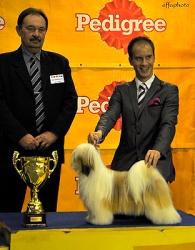 Winning BIS Junior at IDS Nitra in 2011