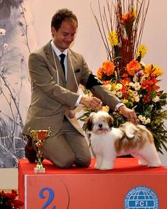 Winning her first res. BIS Puppy