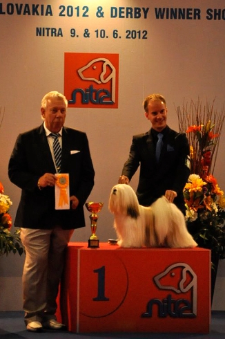 Winning Best In Group 1 in a Derby competition in 2012 (only dogs born the year before could compete)