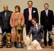 BIS at Pedigree cup 2009